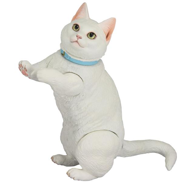 소프비 박스 016B 하얀고양이 먼치킨 [18년1월입고예정]