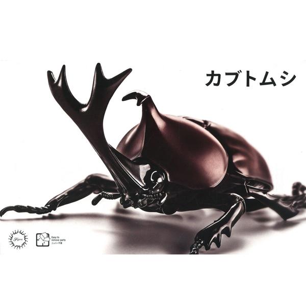 자유연구 시리즈 생물편 딱정벌레 [10월입고예정] [4968728170725]